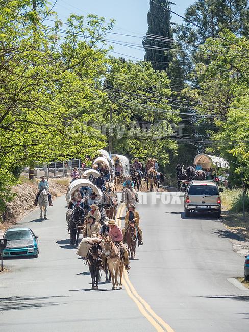 Days of '49 wagon train pass along North Main Street, jackson, Calif.