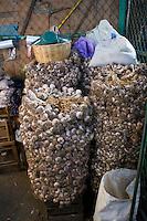 Garlic, Central de Abastos, Oaxaca