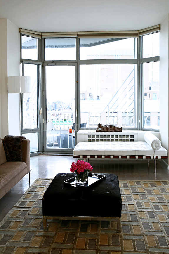 Dynamic young New York couple Dr. and Mrs. Rizopoulos chose up and coming interior designer Paris Kostopoulos to decorated their new apartment in midtown Manhattan.  The modern and arty decor reflects the spirit of the inhabitants (Mrs. Rizopoulos is herself an artist) and showcases the spectacular views of New York City.