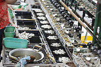 Machine extracting silk threads from silk worm cocoons, Beijing, China, Asia