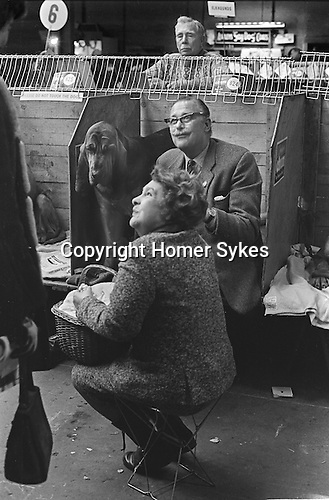 Earls Court, London. 1968 <br /> A prize Bloodhound  sizes up his owners picnic basket at Crufts Dog Show at the Earls Court Exhibition Centre.