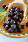 Photos &amp; pictures of the renowned Brazilian acai berries the super fruit anti oxident from the Amazon. Acai berries has been used to help weight loss. Stock-fotos &amp; images