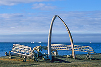 Bowhead whale bone arches and umiak (whale boat) skeletons, Arctic ocean beach, Utqiagvik (Barrow), Alaska