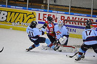 UNIS Flyers - Den Haag 090314