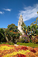 The California Tower and the Museum of Man with the Casa del Rey Moro Garden, Balboa Park, San Diego, California