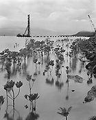 The Stump Thumper, Construction of the Cairns Pier, March 2000<br />