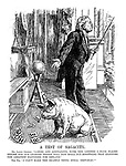 """A Test of Sagacity. Mr. Lloyd George. """"Ladies and gentlemen, with the letters I have placed before him our learned friend will now spell out something that signifies the greatest happiness for Ireland."""" The pig. """"I can't make the beastly thing spell 'Republic.'"""""""