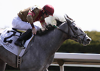 Lady Diva Ga Ga and Brian Hernandez Jr win the 5th race.  April 13, 2012.