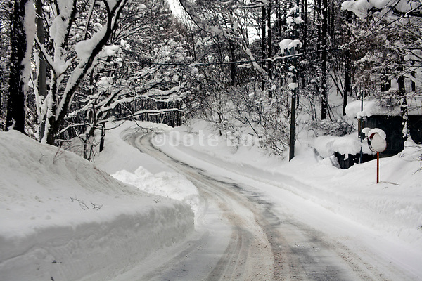 deep snow covered street with trees lining the road