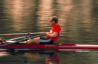 Young adult male speeds across water in scull. sculler.