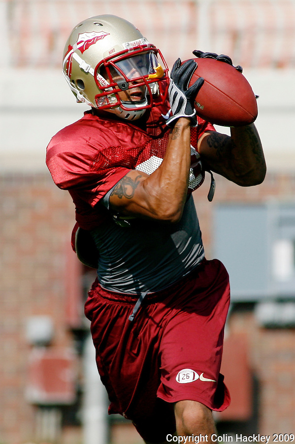 TALLAHASSEE, FL 8/8/10-FSU-080810 CH-Florida State's   A. J. Alexander makes a catch during practice Sunday in Tallahassee. .COLIN HACKLEY PHOTO