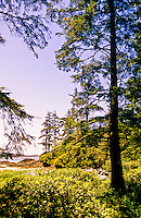 Chesterman Beach (near Wickaninnish Inn), near Tofino, Vancouver Island, British Columbia, Canada