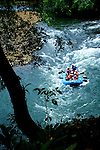Tourists Raft The White Water Rapids On The Sarapiqui River, Costa Rica.