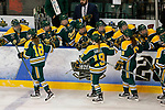 ST CHARLES, MO - MARCH 19:  Cayley Mercer (18), Loren Gabel (19) and Geneviève Bannon (9) of the Clarkson Golden Knights of the Clarkson Golden Knights celebrate are congratulated by teammates on the bench after Mercer's third period goal during the Division I Women's Ice Hockey Championship held at The Family Arena on March 19, 2017 in St Charles, Missouri. Clarkson defeated Wisconsin 3-0 to win the national championship. (Photo by Mark Buckner/NCAA Photos via Getty Images)