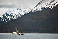 Commercial Seine fishing vessel Halberd in College Fjord, Prince William Sound, southcentral, Alaska.
