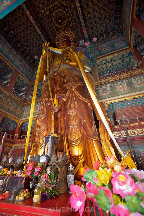 Yonghe Gong (Lama Temple). Maitreya Bodhisattva statue.