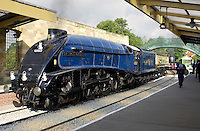 Sir Nigel Gresley A4 Pacific steam engine locomotive and train carriages at Pickering Railway station platform, Yorkshire, England, UK