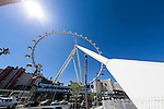 2014 Las Vegas News Feed