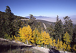Great Basin National Park in October