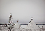 Two traditional Saami tents, or Lavvu - typical of reindeer herding peoples - on the shore of the frozen lake Muddusjarvi, near Inari, Lapland, Finland. Taken at 3am with some moonlight, 30&quot; exposure, December 2011.