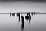 The remains of a bygone era of wealth and prosperity from the timber barons of the late 1800 and early 1900s, old pilings loom in the mist on the Washington side of the mighty Columbia River. The overcast skies provided the perfect atmospheric conditions to light the subject, the falling rain softens the image and disturbs the water such that the long exposures necessary with my smallest apertures render the image as a mysterious and quiet, yet powerful image.<br />