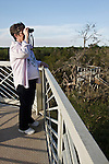 Birding in riparian forest, Canopy Walk and Observation Tower at Santa Ana National Wildlife Refuge, Hidalgo Co., Texas, USA on the Rio Grande