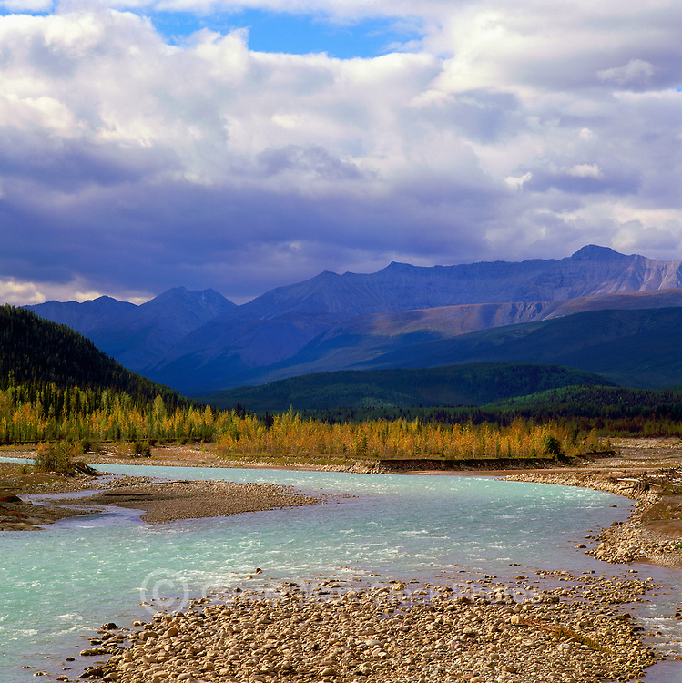Racing River, Boreal Forest and Northern Rocky Mountains along Alaska Highway in Northern BC, British Columbia, Canada