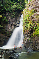 El Yunque, National, Rain  Forest, Puerto Rico; Caribbean; Island; Greater Antilles; Commonwealth Puerto Rico