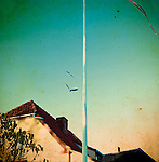 A white flag pole with flying birds near a house
