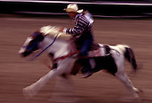 A paniolo (cowboy) rides his painted brown and white horse at full speed at the Parker Ranch Rodeo near Waimea on the Big Island.