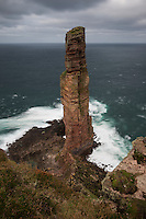 Old Man of Hoy sea stack, Hoy, Orkney, Scotland