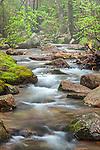 Jordan Stream in Acadia National Park, Downeast, ME, USA
