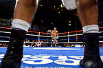 Curtis Stevens (far corner) and  Marcos Primera stare off, while waiting in the neutral corners for the referee to resume their 8 Rds Super Middleweights at the Manhattan Center in N.Y.C. on 11.15.06.&amp;#xA;This was the second time the two fought each other, Primera having won the first fight on a  controversial stoppage by the referee.&amp;#xA;Stevens won the rematch by unanimous decision.<br />