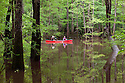 SC00019-00...SOUTH CAROLINA - Art and Emma Dombay canoeing in Congaree National Park near Wise Lake. (MR# D15 -D16)