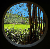 From this one window you can see bamboo, rice and tea growing. (Photo by Matt Considine - Images of Asia Collection)