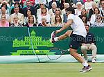 Janko Tipsarevic - Tennis
