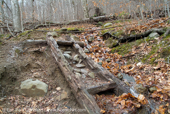 A decaying trail ladder along Kedron Flume Trail in the White Mountain National Forest of New Hampshire USA.