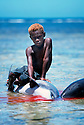 A young boy from Kontu village plays on a speared dolphin watching the men of the village out on the reef continue the hunt..Kontu, New Ireland Province, Papua New Guinea;