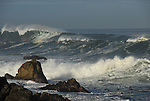 surf at Asilomar State Beach