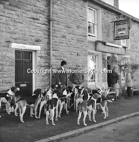 The Blencathra Foxhounds. Barry Todhunter manages the hounds outside The Old Crown while many supporters meet inside to sample the locally brewed beers: Helvellyn Gold, Skiddaw Special Bitter, Blencathra Bitter, Old Carrocks Strong Ale, or perhaps, Doris 90th Birthday Ale. Hesket Newmarket, Cumbria..Hunting with Hounds / Mansion Editions (isbn 0-9542233-1-4) copyright Homer Sykes. +44 (0) 20-8542-7083. < www.mansioneditions.com >