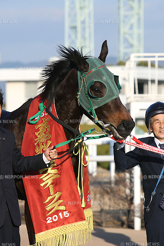 Keiai Elegant,<br /> JANUARY 24, 2015 - Horse Racing :<br /> Keiai Elegant after winning the Kyoto Hinba Stakes at Kyoto Racecourse in Kyoto, Japan. (Photo by Eiichi Yamane/AFLO)