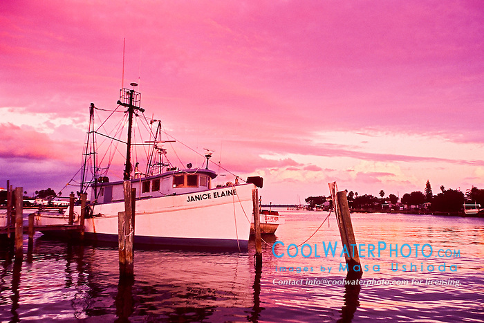 commercial fishing boats in harbor at sunset, Clearwater, Florida, USA, Atlantic Ocean