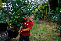 A nursery worker unloads plants that will be inspected for eggs which might hatch and spread the migration of the Cogui frog. War is waged on the Coqui frog because its numbers are exploding--and it has no predators.<br />  <br /> The Coqui--much revered in its native Puerto Rico--was first imported on plant material. The Coqui is as large as a quarter and has a chirpy little call that is the decibel level of a lawnmower.