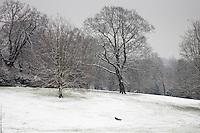 Child toboggans on winter's day down snow-covered Hampstead Heath, North London, England, United Kingdom