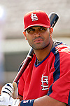 14 March 2007: St. Louis Cardinals first baseman Albert Pujols waits to take batting practice prior to facing the Washington Nationals at Roger Dean Stadium in Jupiter, Florida...Mandatory Photo Credit: Ed Wolfstein Photo