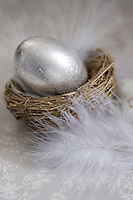 Close-up of a silver egg in a small nest surrounded by feathers