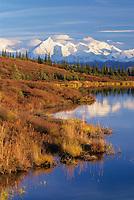 Autumn shoreside of Wonder Lake, Mount Brooks and the Alaska range, Denali National Park, Alaska