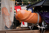 The Cypress Pine phallus that is paraded in the Tagata Fertility Festival.