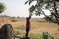 Young Adivasi girl picking up flowers from a tree right outside the village. Women tend to do all their activities in the early morning to avoid the danger of being attacked by drunk men at night in the streets of the villages.
