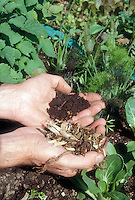 Hands holding garden dirt compost comparison before & after side by side display